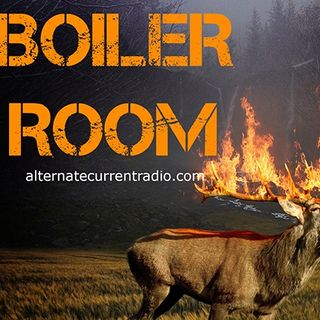 Burn Notice: Burning Man, Burning Rain Forests, Burning Books