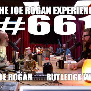 #661 - Rutledge Wood