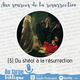 #206 Aux sources de la Résurrection (3) Du shéol à la résurrection