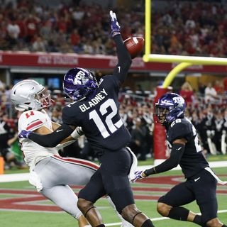 Purple People Eaters: Vikings Draft Review! Needs Via Free Agency or Trades Moving Forward?