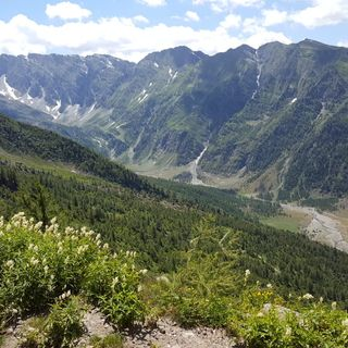 Tutto Qui - mercoledì 18 luglio - Le aree protette nel torinese passano da 4.000 a 31.000 ettari