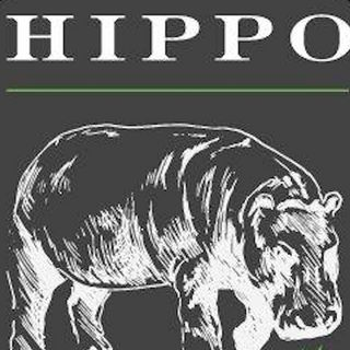 Co-Founder of Hippo Premium Packaging, Kary Radestock, on the Evolution of Cannabis Packaging