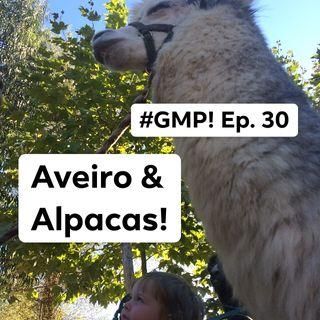 Aveiro & Alpacas! - The 'Good Morning Portugal!' Podcast - Episode 31