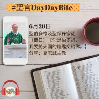 29/06/2020 聖言DayDayBite - 夏志誠主教分享