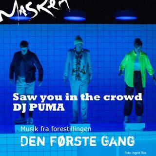 Saw you In the crowd - DJ Puma DK