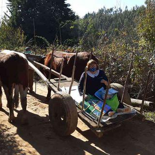 Profesora se transporta en carreta para poder enseñarle a sus alumnos