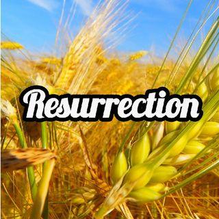 Episode 10 - Resurrection - Negative Transference - 6-29-21