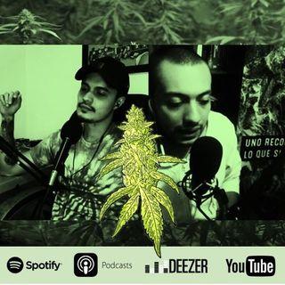 Capítulo 35: Cultivar Marihuana - ¿Cómo iniciar?