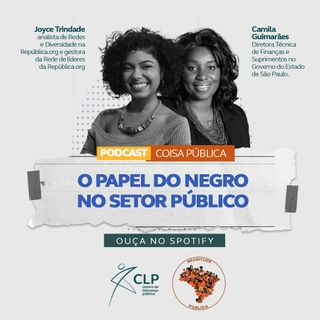 O papel do negro no setor público