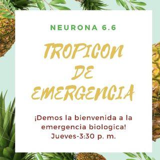 Tropicon de Emergencia