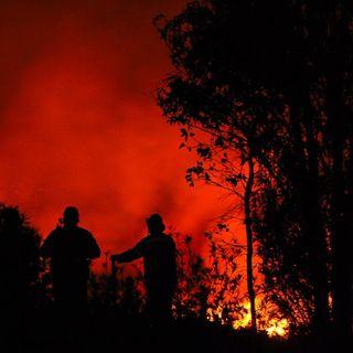 Sólo se registran 36 incendios en 13 entidades