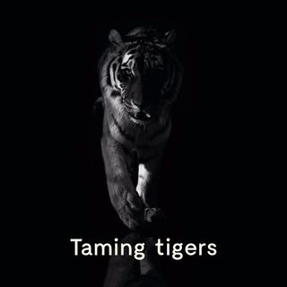 #1 Well That's Very Nice, For Him - Taming Tigers