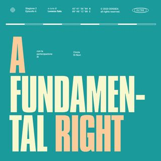 Stagione 2, Puntata 6 - A Fundamental Right