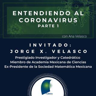 Entendiendo al coronavirus: ¿Es grave?
