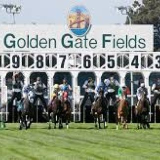 GOLDEN GATE FIELDS R4 SELECTIONS FOR 3/20