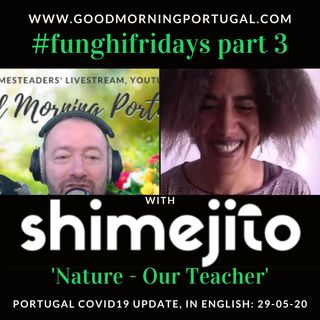 Portugal Covid news & weather update PLUS 'Nature, Our Teacher'