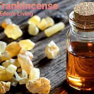 Frankincence And The HEALTH BENEFITS