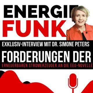 E&M ENERGIEFUNK - Forderungen der Erneuerbaren Stromerzeuger an die EEG-Novelle - Podcast für die Energiewirtschaft