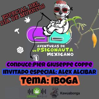 AVENTURAS DE UN PSICONÁUTA MEXICANO IBOGA