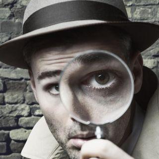 Public Investigators