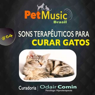 #04 Sons Terapêuticos para Curar Gatos | PetMusic