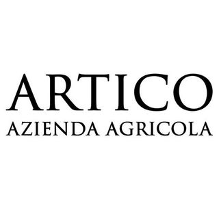 Artico - Federico Artico