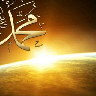 قصص الأنبياء النبي محمّد صلّى اللّه عليه وسلّم