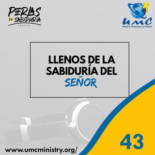 43 Llenos De La Sabiduria Del Señor