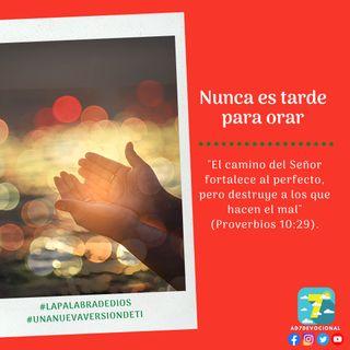 11 de diciembre - Nunca es tarde para orar - Una Nueva Versión de Ti 2.0 - Devocional de Jóvenes