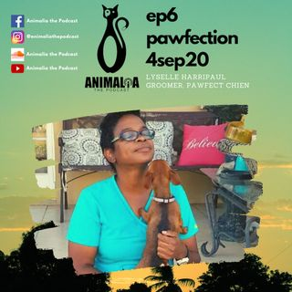 ANIMALIA 06 - Pawfection - 4Sep20