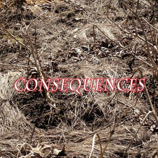Consequences, Genesis 4:12-15