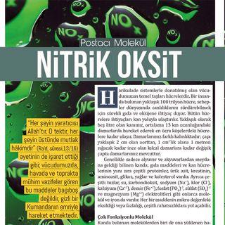Postacı Molekül Nitrik Oksit - Nisan 2018