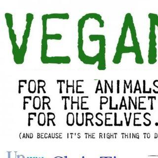 Jon Camp of Vegan Outreach