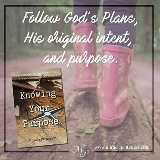 Follow God's Plans, Intent & Purpose