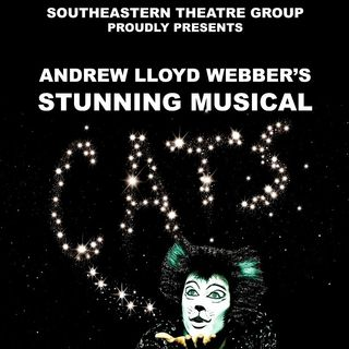 Pat McEvoy reviews Cats at the Theatre Royal