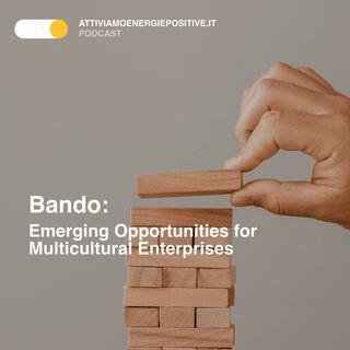 Bando📑: Emerging Opportunities for Multicultural Enterprise