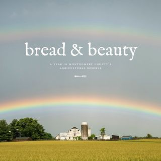 Bread and Beauty: A Year in Montgomery County's Agricultural Reserve