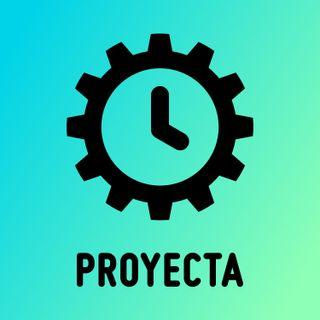 Rol del director de proyectos, Procesos dentro de la dirección de proyectos y Grupos de procesos y áreas de conocimiento