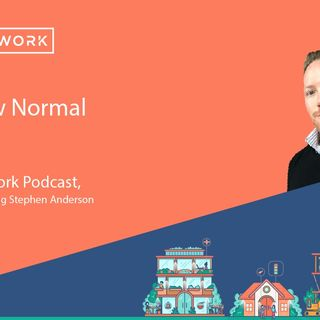 Stephen Anderson - The New Normal