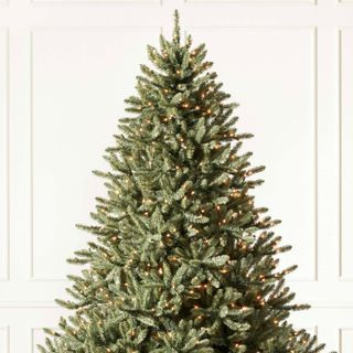 Christmas Tree Odyssey