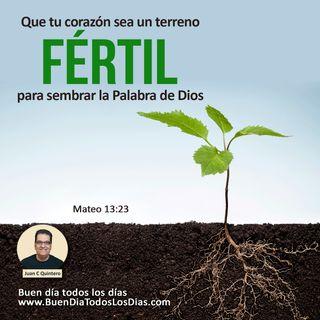 Terreno fértil para la Palabra de Dios