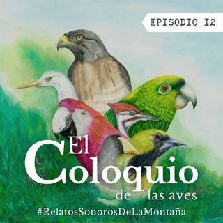EP12: El coloquio de las aves
