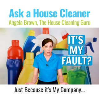 It's My Fault - It's My Cleaning Business