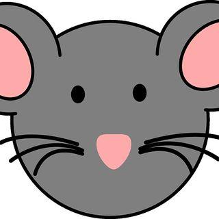 El ratón y la flor