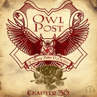 Chapter 036: Owl Post