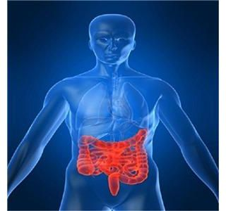 Ulcerative Colitis Info, Drugs, Health Insurance and Plans