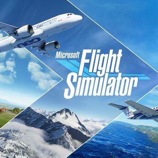 Is frame rate THAT important in games like Flight Simulator 2020?