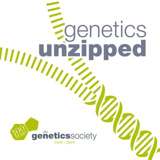 Genetics Unzipped