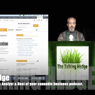 Cannabis Stocks & ETF Update: Still in the Red, but Green with Envy (2020)