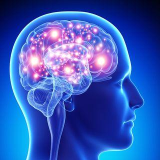 La fuerza del olvido. Neurobiología de la memoria